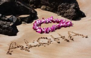 aloha hawaii taxes