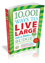 10001-ways-to-live-large-3d-coverb-150x210